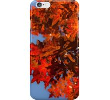 Radiant Reds - Oak Leaves and Brilliant Blue Sky iPhone Case/Skin