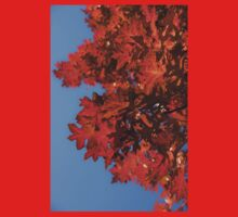 Radiant Reds - Oak Leaves and Brilliant Blue Sky Kids Clothes