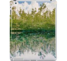 green reflex iPad Case/Skin