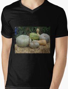 Pumpkin Patch Mens V-Neck T-Shirt