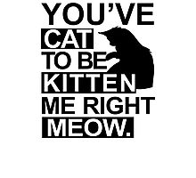 YOU'VE CAT TO BE KITTEN ME RIGHT MEOW TSHIRT Funny Animal Lovers TEE Cats Feline Photographic Print