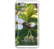 Spring sign iPhone Case/Skin