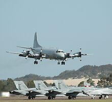 Orion, Hornets and Hawk, Williamtown Airshow 2010 by muz2142