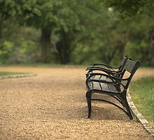 Bench in park at autumn by iWorkAlone
