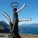 Gildetun - Norway by Arie Koene