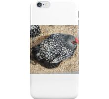Checkered Chook iPhone Case/Skin