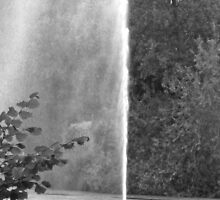 FOUNTAIN IN BLACK AND WHITE by Colleen2012