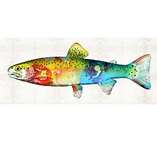 Rainbow Trout Art by Sharon Cummings Photographic Print