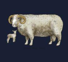Dorset Horned Sheep Kids Tee