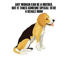 Beagle sitting Photographic Print