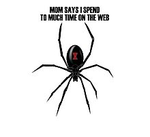 Black Widow Spider Photographic Print