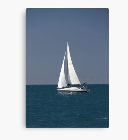 4392. Canvas Print