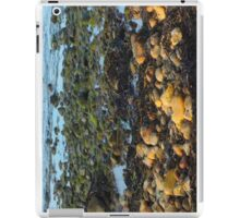 On the rocks iPad Case/Skin