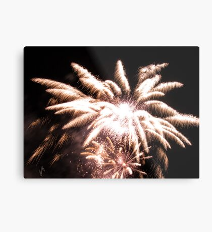 Flower fireworks Metal Print