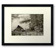 Faded Memories Framed Print