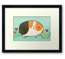 Tri-Color Guinea-pig with a Slice of Cucumber Framed Print