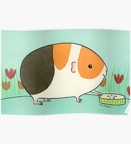 Tri-Color Guinea-pig with a Slice of Cucumber Poster