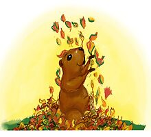 Happy Groundhog by roosa54