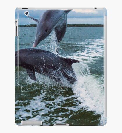 Everglades Dolphins iPad Case/Skin