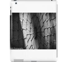 Stone Circle iPad Case/Skin