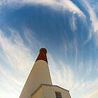 Barnegat Lighthouse,  NJ by Dennis Maida