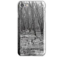Wet Lands iPhone Case/Skin