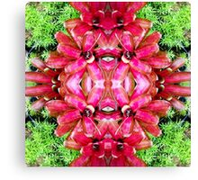 Tropical Kaleidoscapes 4 Canvas Print
