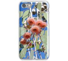Pink gum tree blossoms and bees iPhone Case/Skin