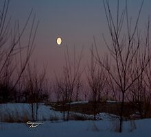 Moon at Sunrise  by WestbrookArts
