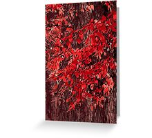 Red branches Greeting Card