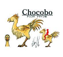 Chocobo Photographic Print