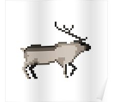 The reindeer Poster