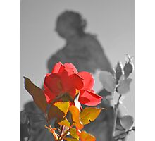 Flower and Statue Photographic Print