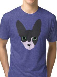 Sphynx With Emerald Eyes Tri-blend T-Shirt