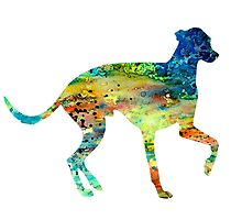 Greyhound 3 by Watercolorsart