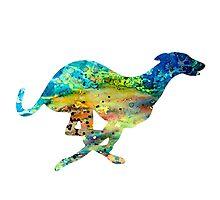 Greyhound 4 by Watercolorsart