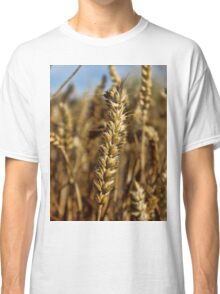 Ear of wheat Classic T-Shirt