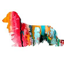 Long Haired Dachshund 2 by Watercolorsart