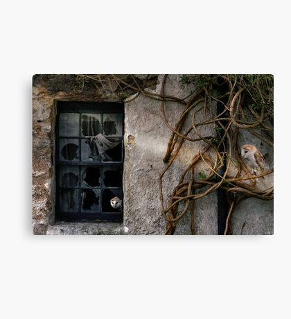 The Haunting of Old Places. Canvas Print