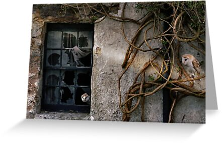 The Haunting of Old Places. by Kenart