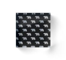 Silver bears Acrylic Block