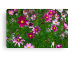 Late Summer Flowers Canvas Print