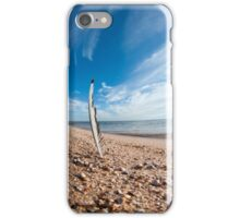 Beach feather. iPhone Case/Skin