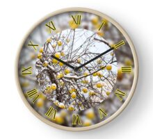 Hanging old apples on tree Clock