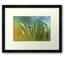 Waiting for the right moment... Framed Print