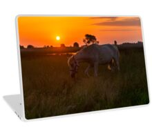Horse grazing on pasture Laptop Skin