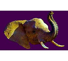 Elephant Elegance - WhatIf Design and More Photographic Print