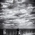 Bait by Nigel Bangert