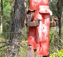 Ned Kelly Mailbox by Marilyn Harris