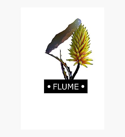 FLUME SAY IT Photographic Print